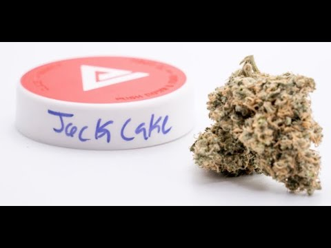 The Jack Cake Strain Review Featuring Ember Valley & The PAX 3 Dry Herb Vaporizer