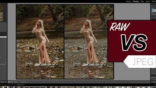 RAW vs JPEG which should you use?