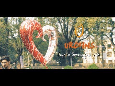 URCHINS Trip to Springfest | Documentary Film
