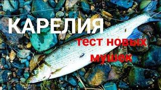 Рыбалка в карелии 2021 Ловим хариуса на мушки