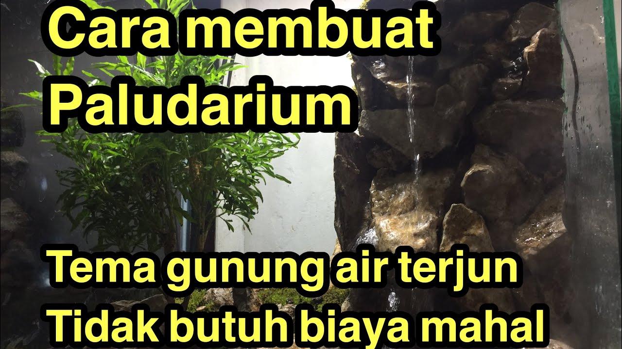 Cara Membuat Paludarium Bagi Pemula Tema Gunung Air Terjun Youtube
