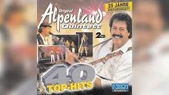 Original Alpenland Quintett - Einer spinnt immer