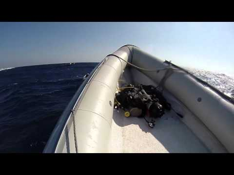 Hurricane Liveaboard: Southern Red Sea, May 2014 [Part 3]