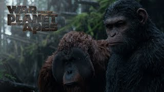War for the Planet of the Apes | Extended Preview | 20th Century FOX