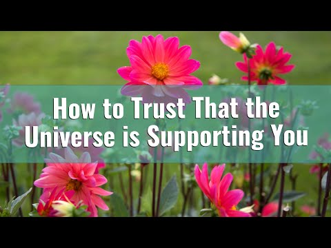 Trusting That the Universe Supports You