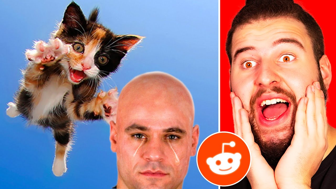 Los Mejores Videos Graciosos   Videos Que Encontré En Reddit #5