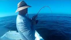 St Marks Fishing 2/20/2019