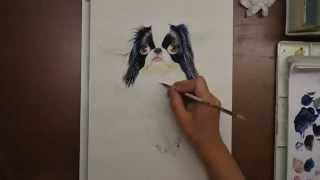 日本犬の狆(ちん)を描いてます(*^^*) I draw pictures of Japanese Chin...