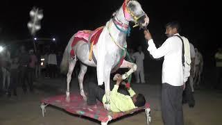 vuclip chori tere aakhter aaj car layo su haryanvi song with horse dans