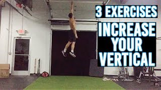3 LEG EXERCISES TO INCREASE YOUR VERTICAL
