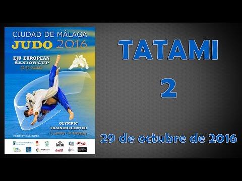 European Judo Cup Málaga 2016 - Tatami 2 - 29/10/2016