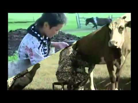 Mother In The Dream Loi Viet, Tieng Viet (Giấc mơ về mẹ) - Cực Xúc động