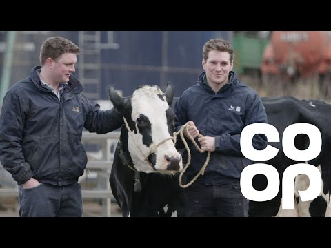 Co-op Food | Meet the Producer - Dairy Farmers