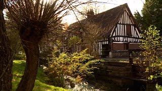 Lyons-la-forêt : le charme discret de la Normandie