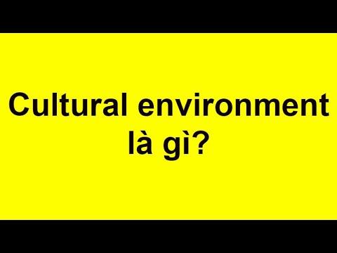 Môi trường văn hóa (Cultural environment) trong marketing là gì?