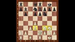 Поучительные шахматные партии 1. Дебют ферзевых пешек. Система Колле