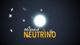 The Sterile Neutrino Discovery