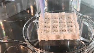 3D skin and bone printing could heal Mars astronauts