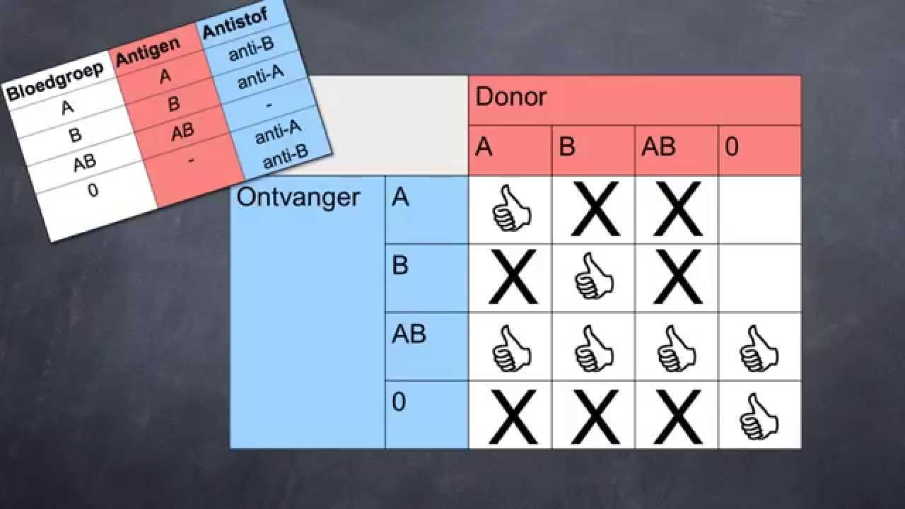 bloedgroepen transfusie
