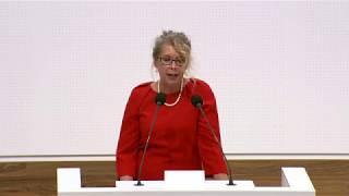 Annette Schütze MdL zu Digitalisierungsprofessuren am 18. Mai 2018