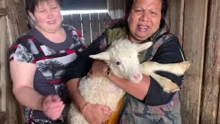 Моя индийская свекровь едет в Сибирскую деревню. Индо-русская семья. Май 2019