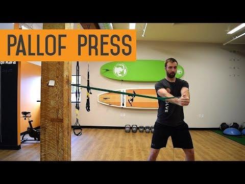 Pallof Press   Evolve Performance Healthcare   Portland Sports Therapy