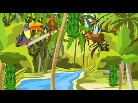 What are the major types of ecosystems? - YDP services - YouTube