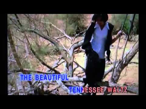 Tennessee Waltz,karaoke,in the style of Connie Francis