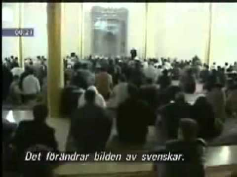 Muslim Riots in Malmö, Sweden (English)