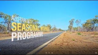 Australia's Seasonal Worker Programme