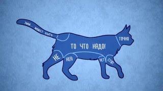 Как правильно гладить животных [Лучшие видео ADME](Больше интересных видео - https://goo.gl/SJtlVI Лучшие видео YouTube на одном канале! Подписывайтесь! Ставьте лайки), 2016-02-07T22:22:00.000Z)