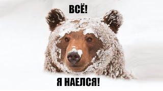 """""""Русские готовы есть снег, но предпочитают деликатесы"""" – заявил Дмитрий Песков"""