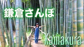 【Vlog】そうだ鎌倉へ行こう!(英勝寺編)Eishoji In kamakura