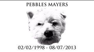 RIP PEBBLES MAYERS - SEXY PEB'S THE POLAR BEAR RAP WITH LYRICS - PAUL AND TOM