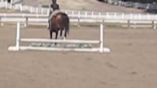LA Horse Trip Day 2