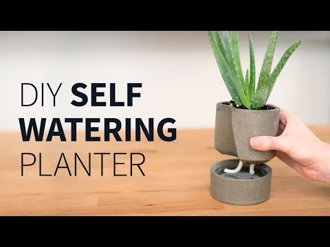 download DIY self watering concrete planter | How to