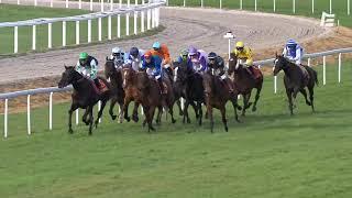 Vidéo de la course PMU PRIX DE BELMONT