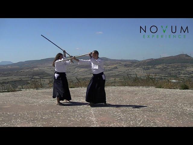 01 Kumi jo ichi - Aikido Novum Experience - Kumi jo Juppon -  組み杖 一 - 組み杖十本  - 合氣道 - 合氣杖