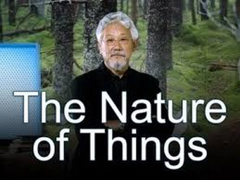 The Nature Of Things S54e02 Gorilla Doctors