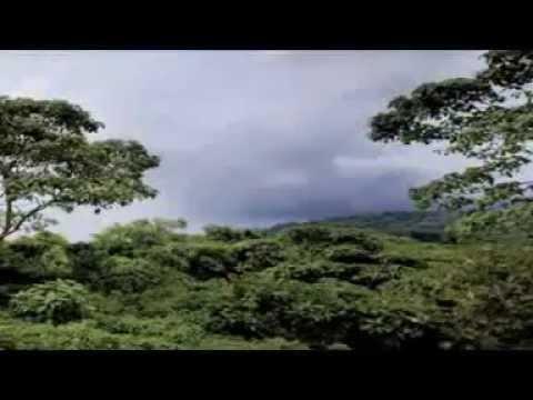 Nord Kivu, un paradis à l'Est de la RDC...