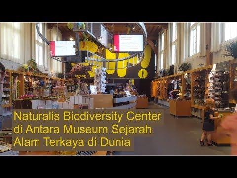 Naturalis Biodiversity Center, di Antara Museum Sejarah Alam Terkaya di Dunia