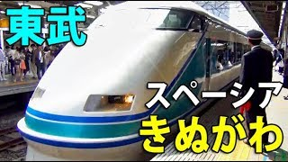 【池袋→東武日光】JR&東武直通 特急スペーシアきぬがわ号乗車記