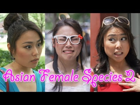 Asian Female Species 2