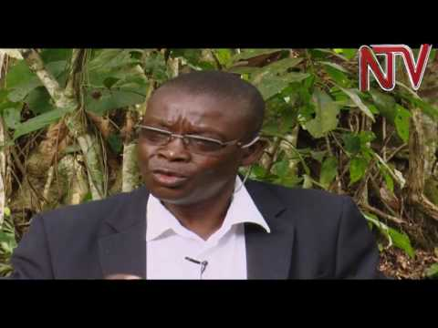 Ebizibu ebilumbye Uganda ennaku zino: Abasawo b'ekinnansi bagamba nti empewo nnyiivu