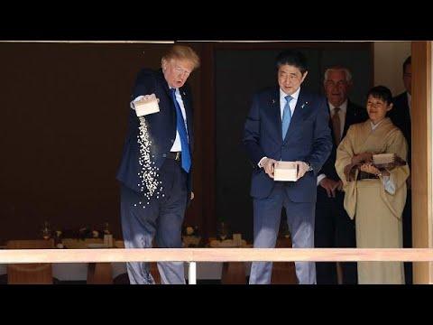Trump dumps full box of fish food into Japanese koi pond