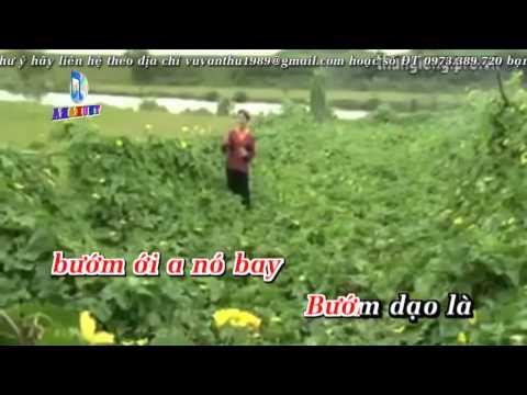 Hoa thơm bướm lượn   Lương Thu Hồng   Karaoke   Full Beat cut