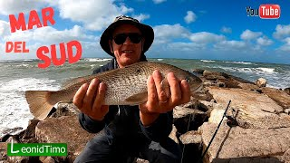 Классное место для рыбалки на океане Рыбалка в Аргентине