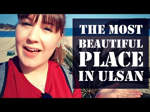THE MOST BEAUTIFUL PLACE IN ULSAN Daewangam [Vlog #3]