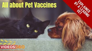 Now Trending - Vaccinations for Pets explained by Dr. Rand Spongberg