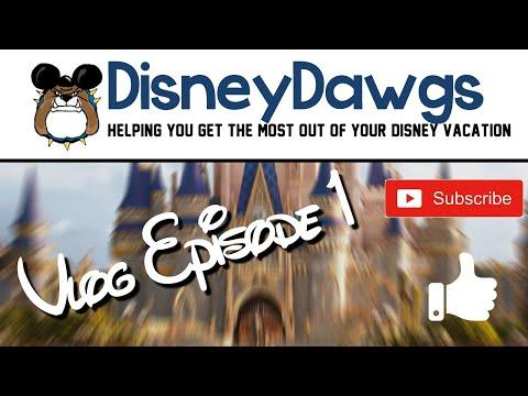 DisneyDawg Vlog Episode 1 1